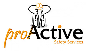 ProActiveSafetyServices
